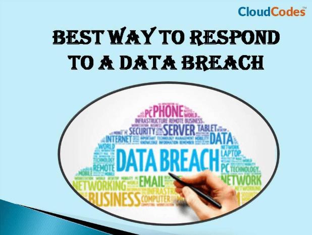 respond to a data breach