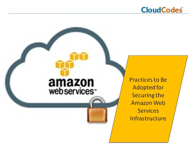 Securing the Amazon Web Services Infrastructure