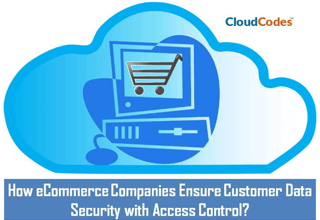 Customer Data Security with Access Control