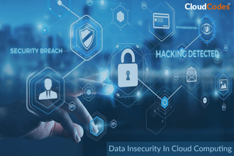 Data Insecurity In Cloud Computing